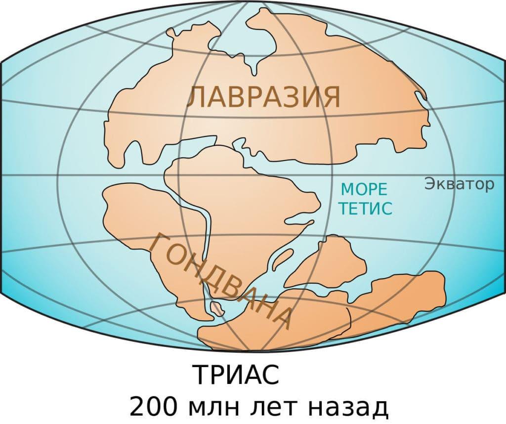 Гондвана суперконтинент