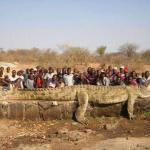 Самые большие рептилии в мире