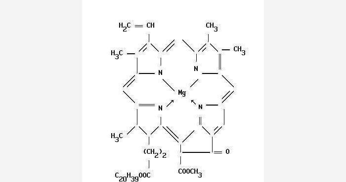 Формула хлорофилла
