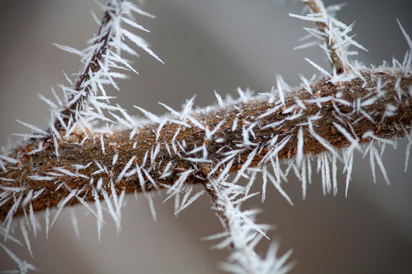 Осадки в виде ледяных игл