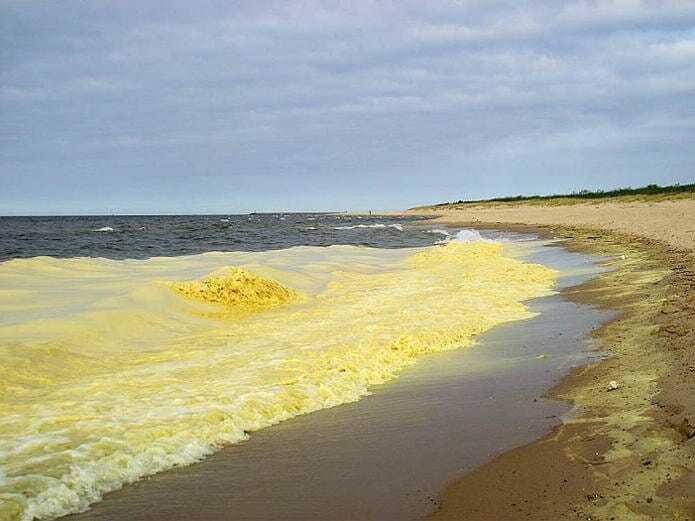 Цвет воды в Желтом море