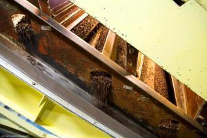 Подготовка какао бобов