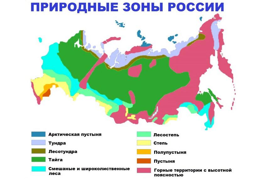 На карте видно, как разбросана зона лесов по территории страны