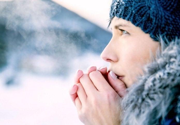 Как человек вырабатывает тепло?
