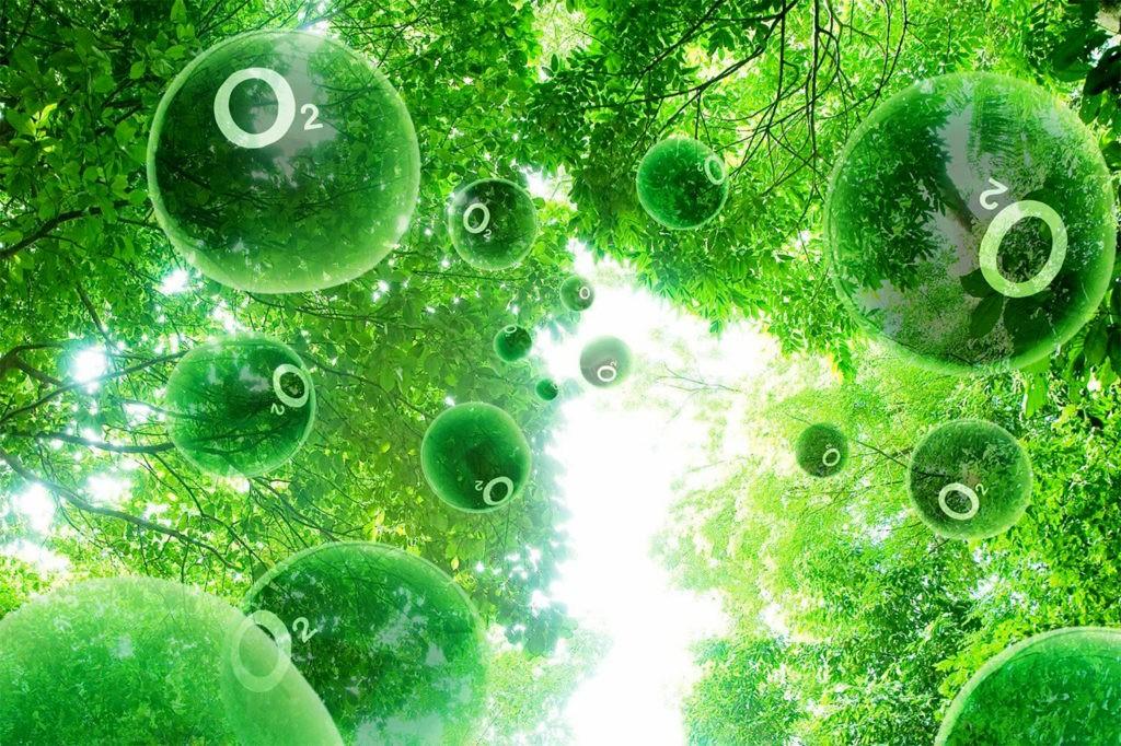 Кислород является неотъемлемой частью жизни на Земле