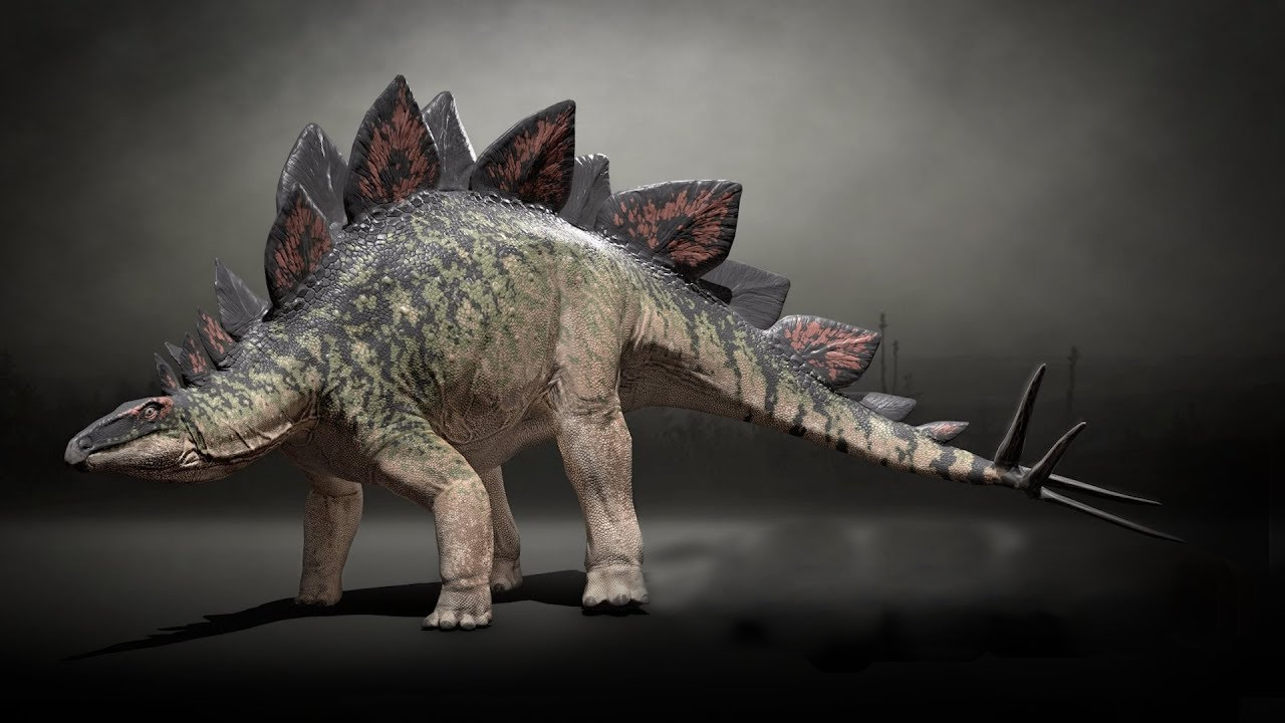 Каким был климат во времена динозавров?