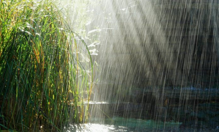 Какую форму имеют капли дождя?