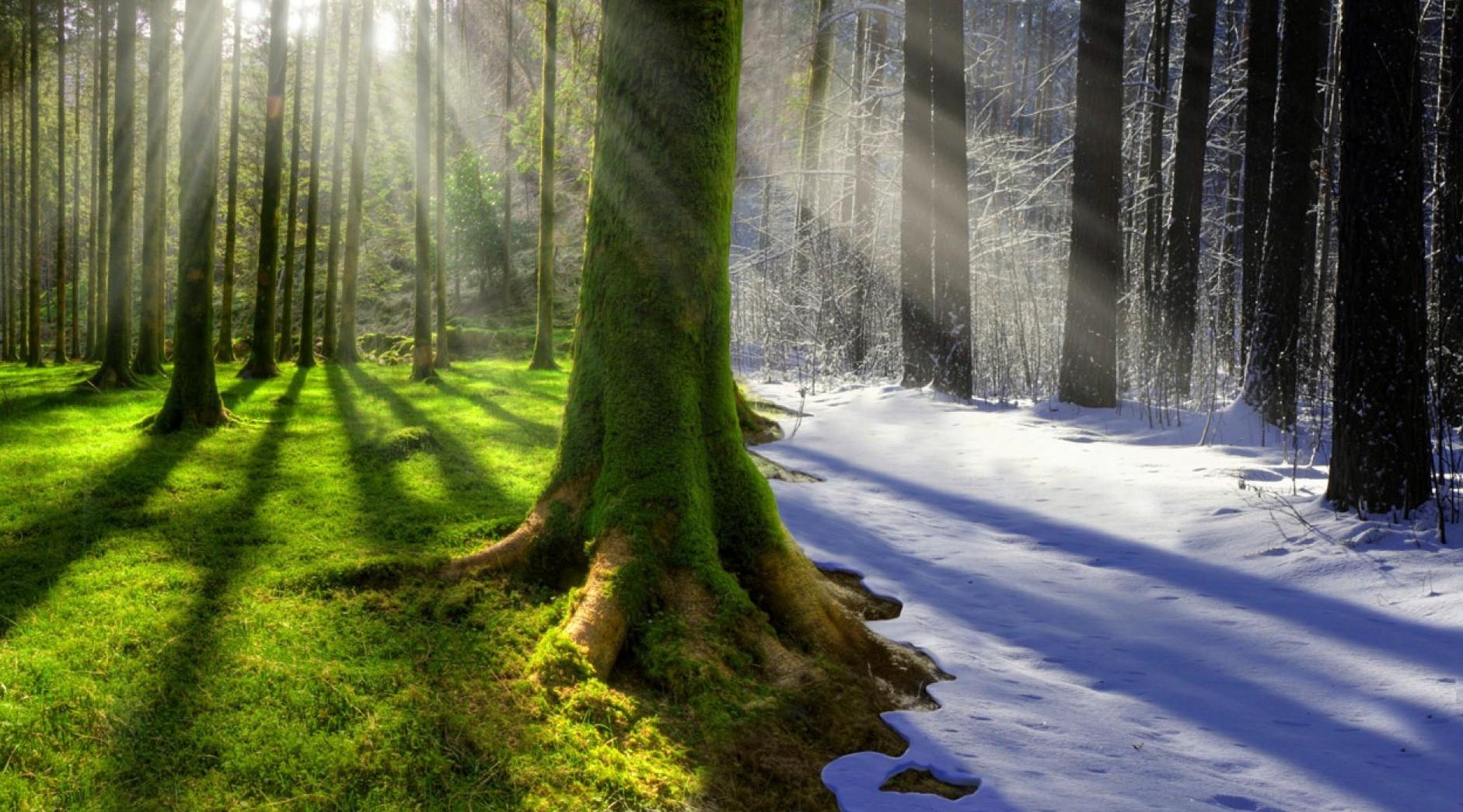 Климат: что такое, описание, виды, особенности, фото и видео