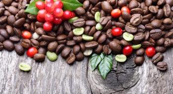 Кофе: в ягодах, зеленый, после обжарки