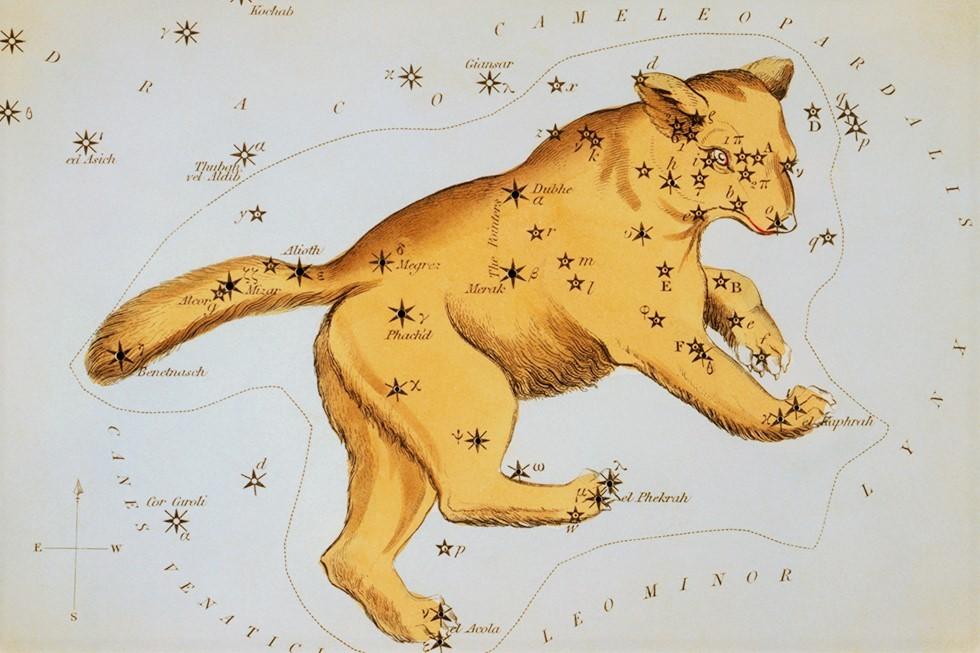 Один из вариантов изображения Большой Медведицы на звездной карте