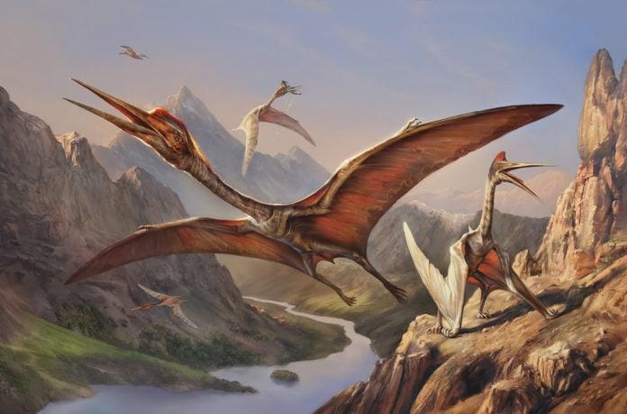 Кто первым научился летать-первые крылатые динозавры?