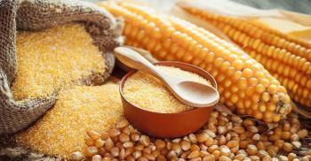 Кукуруза: початки, зерно, крупа