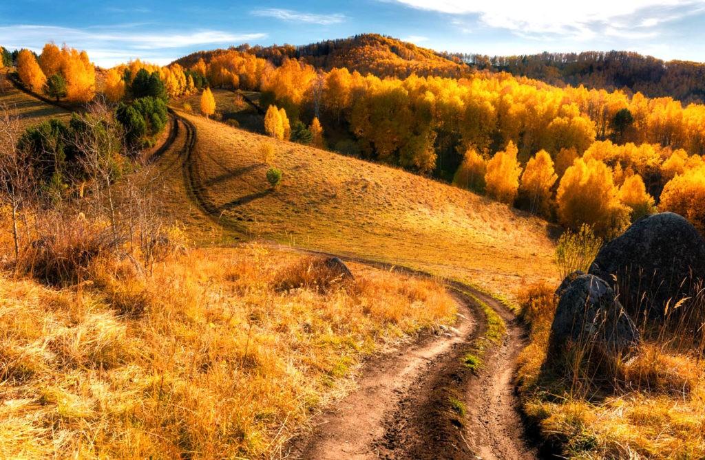 Лесостепь осенью