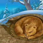 Почему медведь впадает в спячку?
