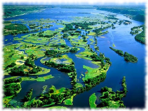 Миссисипи - дельта реки