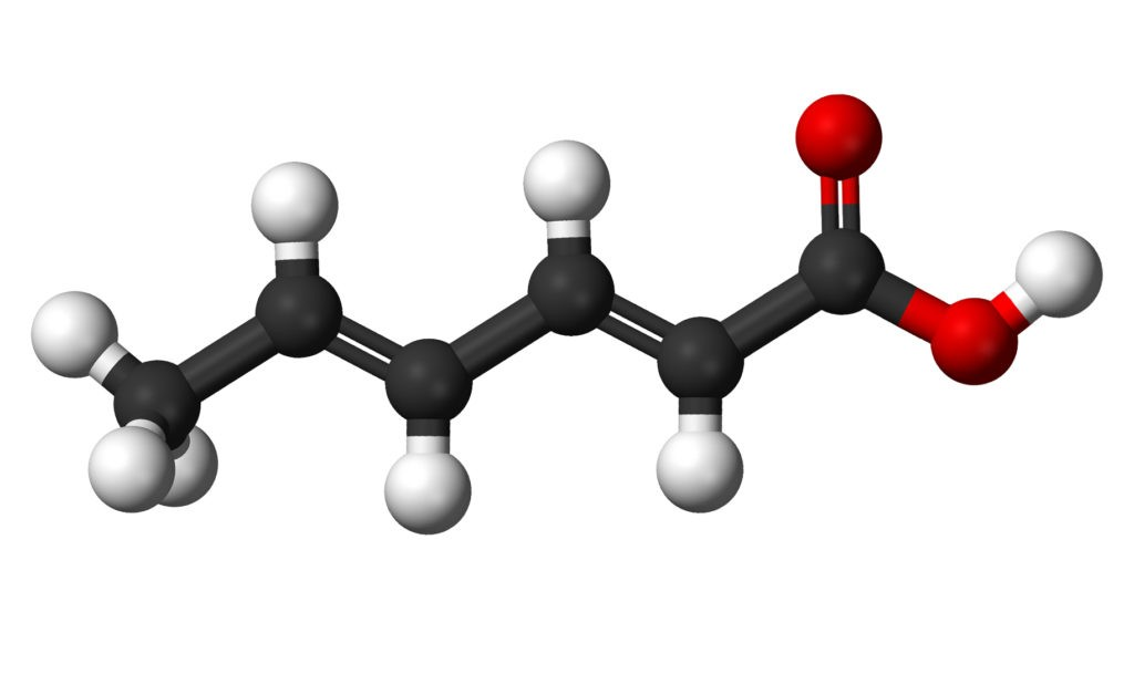 Молекула сорбиновой кислоты