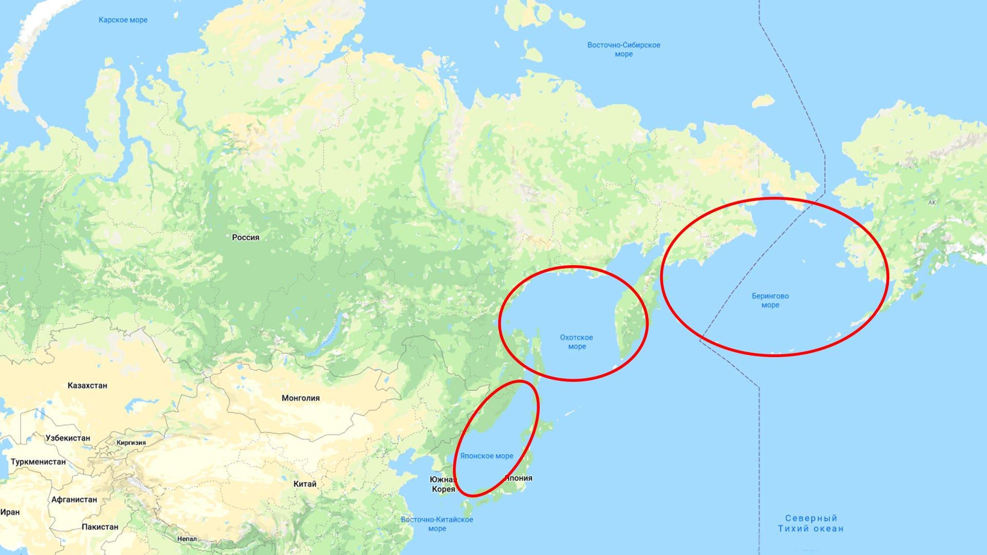 Моря Тихого океана, омывающие Россию