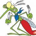 Почему комары кусают и почему их укусы чешутся