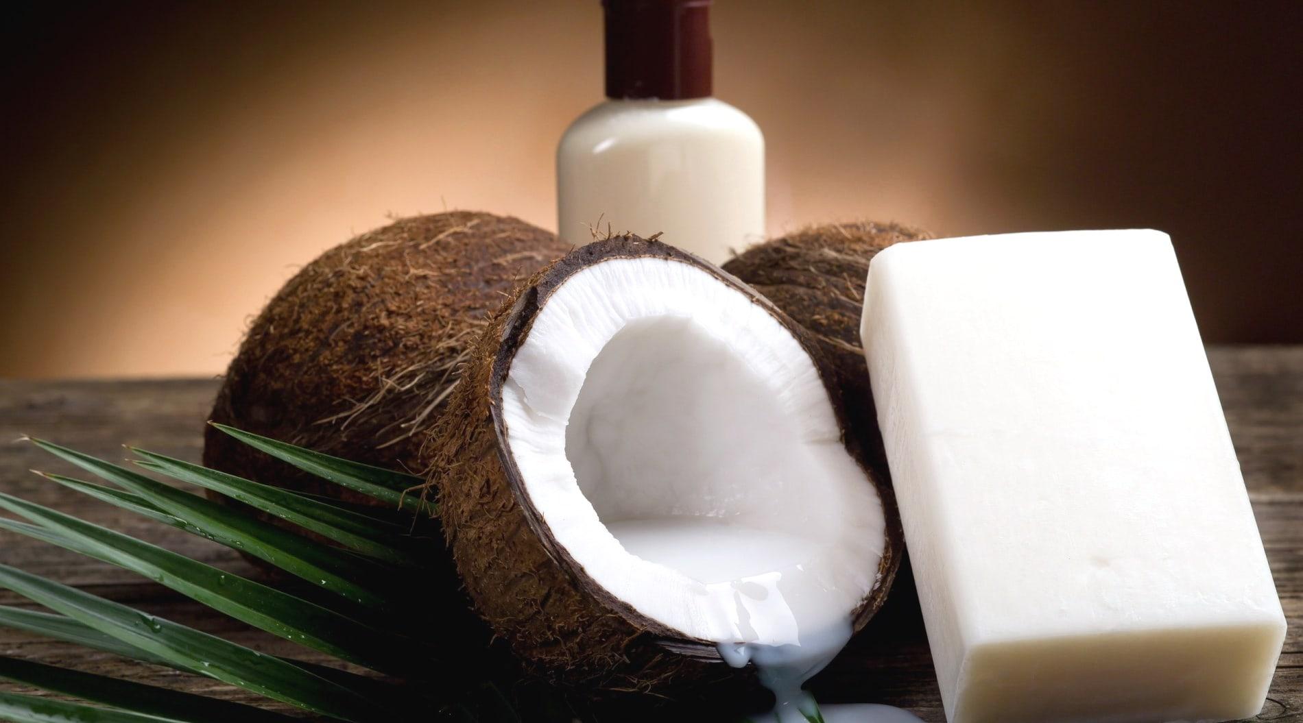 Из кокоса добывают масло, которое широко применяется во многих областях