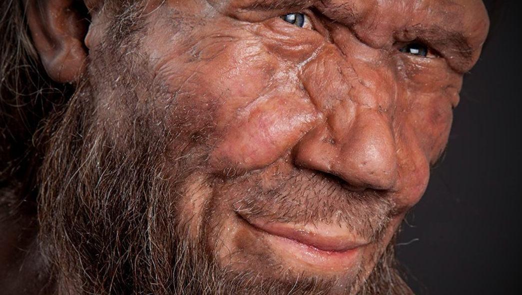 Определена новая причина исчезновения неандертальцев