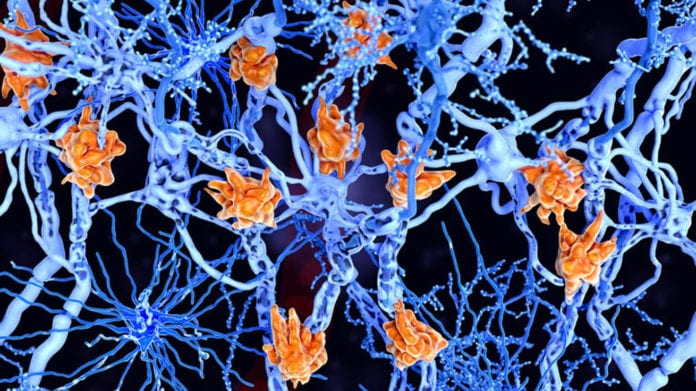 Учеными раскрыта тайна возникновения болевых ощущений