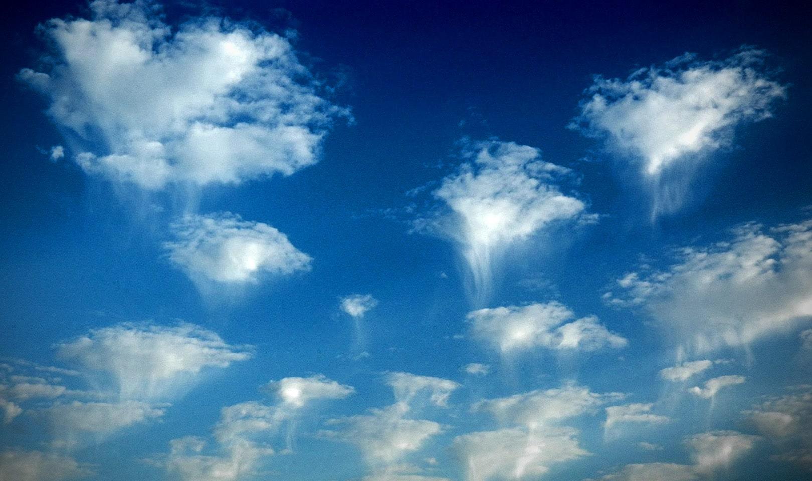 Облака-медузы