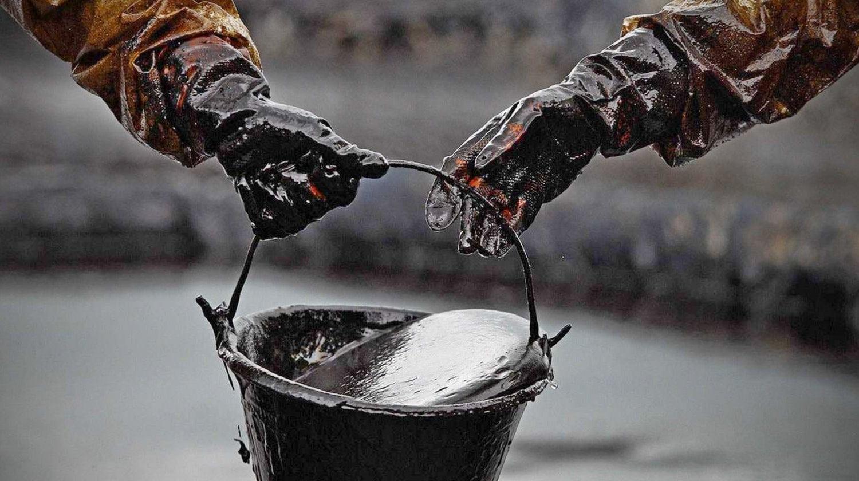 Откуда взялась нефть?