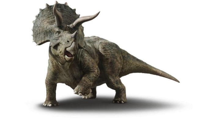 Почему другие животные не вымерли вместе с динозаврами?