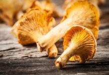 Почему грибы лисички так называются?