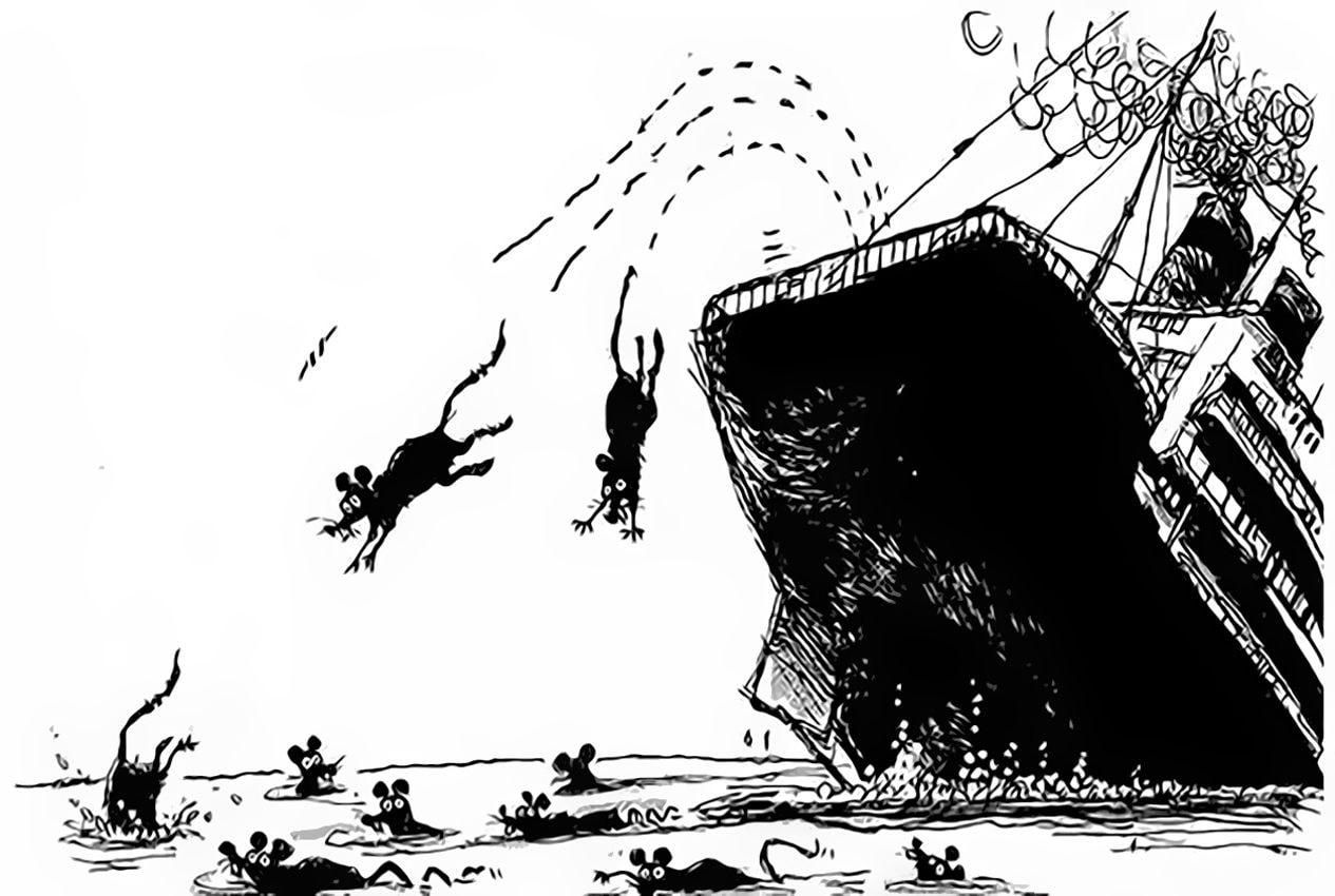 Куда бегут крысы с тонущего корабля?