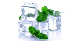 Почему от мяты «холодно» во рту?