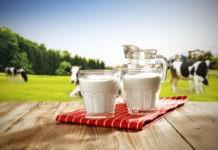 Почему молоко белое?
