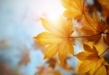 Почему «сентябрь» означает седьмой, если на самом деле он девятый?