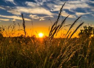 Почему самые жаркие дни бывают после летнего солнцестояния?