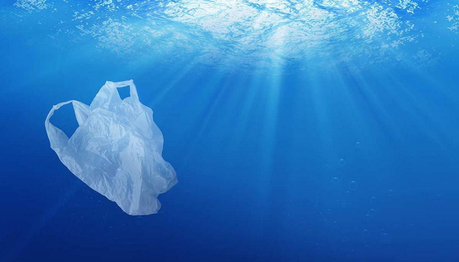 Современные методы очистки океанов от пластика оказались малоэффективными