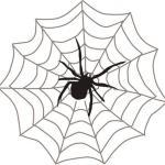 Почему пауки плетут паутину?