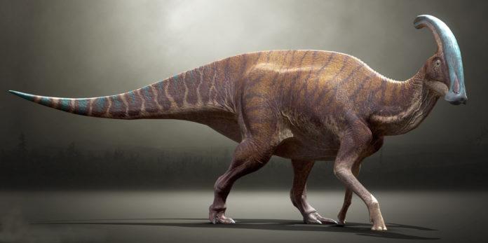 Какая была продолжительность суток и года во времена динозавров?