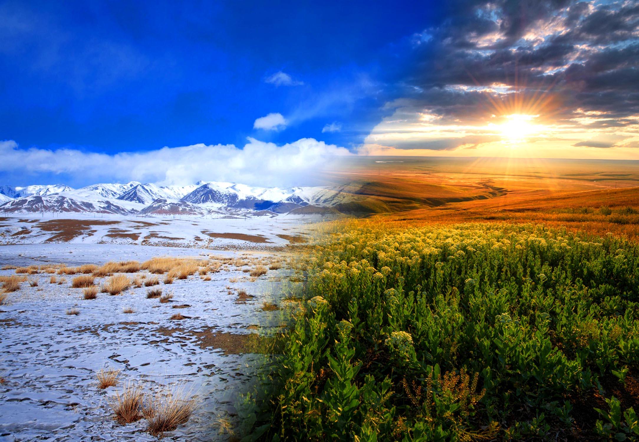 Природные зоны России: виды, названия, карта, климат, описание, почвы, характеристика, животные, растения, фото и видео