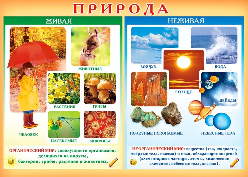 Живая и неживая природа
