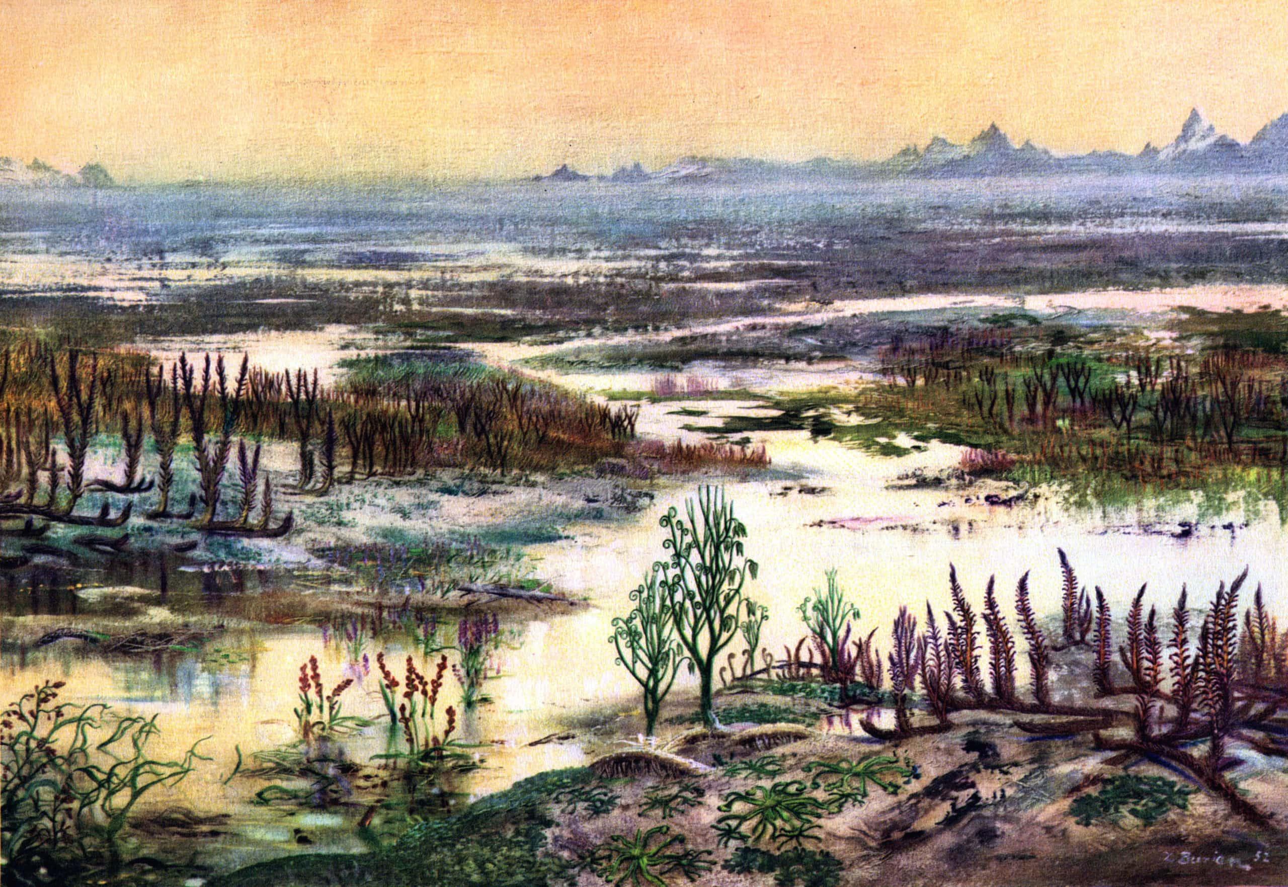 Первые растения на Земле