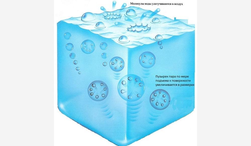 Почему в кипящей воде образуются пузырьки пара?