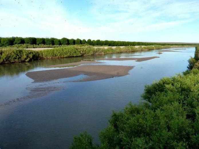 Рио-Гранде - река в Северной Америке