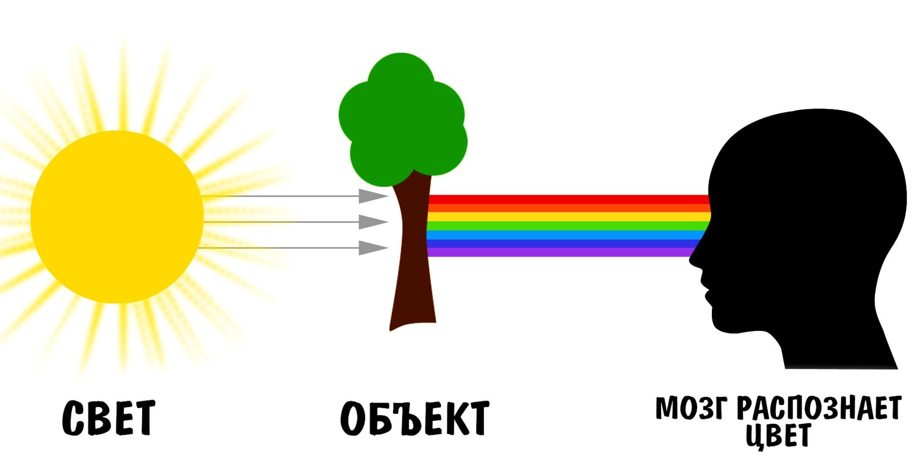 Упрощенная схема распознания цвета