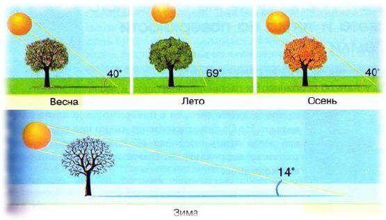 Распределение солнечного света