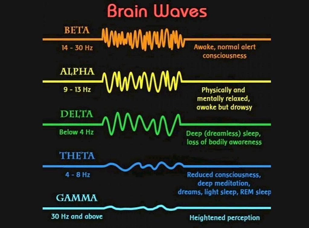 Сравнение активности ритмов головного мозга