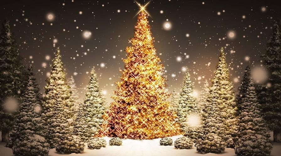 Почему православное Рождество не совпадает с католическим?