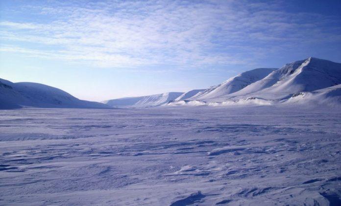 Арктическая пустыня - описание, расположение, особенности, фото и видео