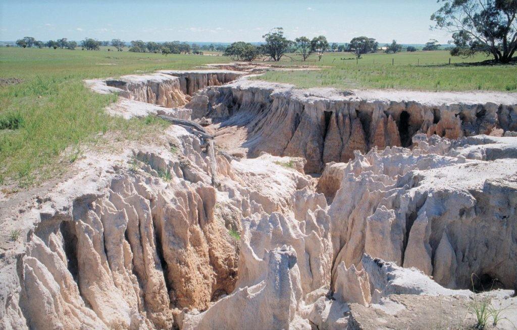 Наглядная демонстрация эрозии почвы