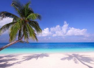 Самые теплые моря в мире