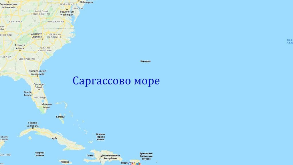 Саргассово море на карте